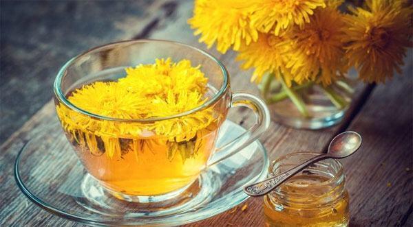 Vì trà có vị dễ uống nên do đó trà bồ công anh được nhiều người ưa chuộng