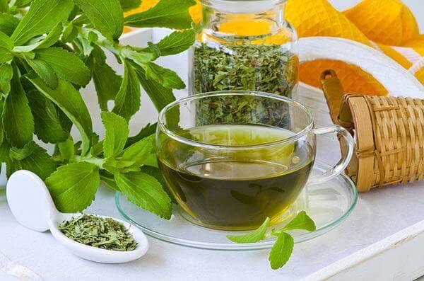 trà cỏ ngọt còn làm giảm nhu cầu chất đường và chất bột của cơ thể