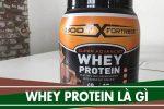 Whey protein, BCAA là gì, có tác dụng gì - Cách pha để uống