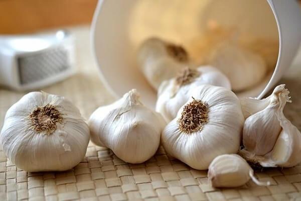 Ăn tỏi ngâm dấm có tác dụng gì trong phòng/chữa bệnh