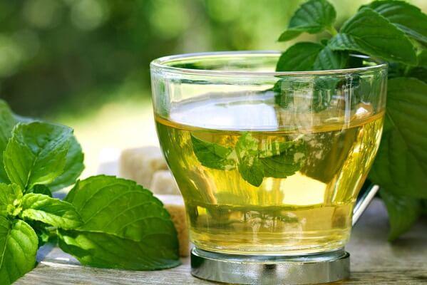 Uống trà bạc hà hoặc trà gừng